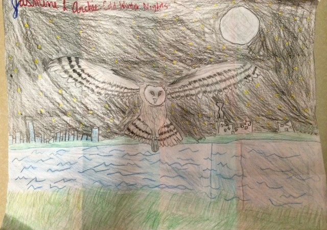 owl-640x480