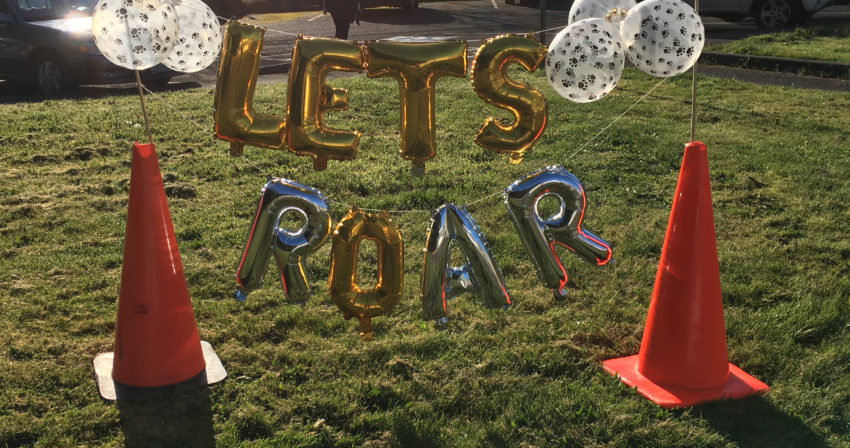 """a string of balloons glows in the morning sunlight, spelling out """"let's ROAR"""""""
